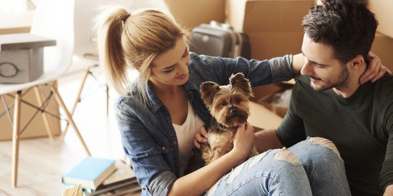 Come affrontare un trasloco con bambini e/o animali